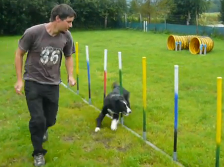 Jones beim Agility
